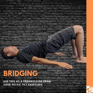 bridging best physio exercises for lower back pain