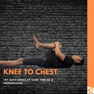knee to chest best physio exercises for lower back pain