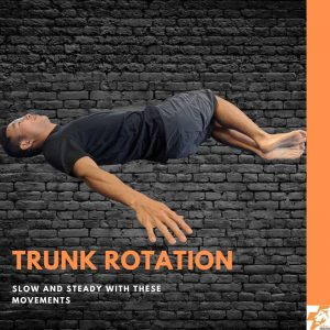 trunk rotation best physio exercises for lower back pain