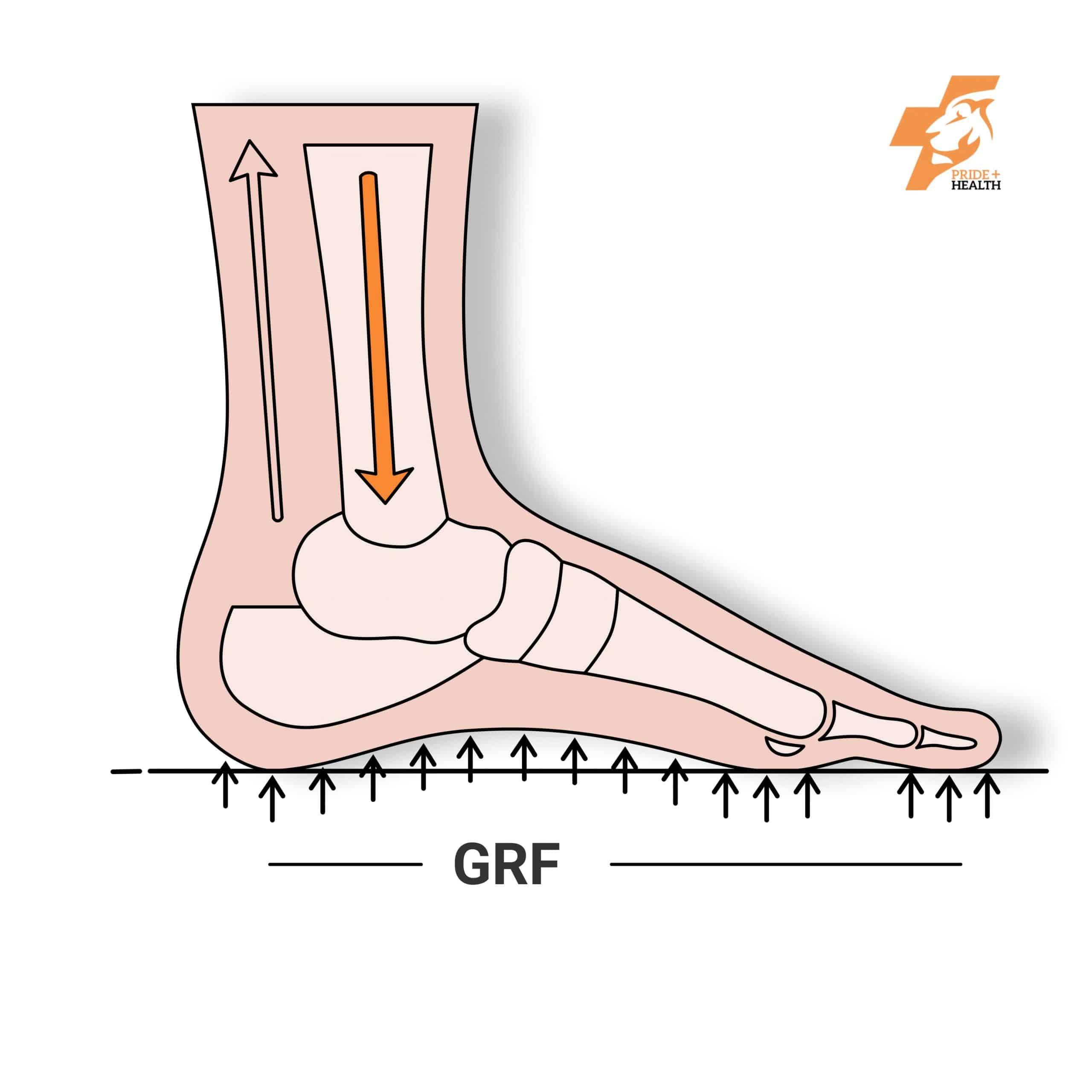orthotics ground reaction force