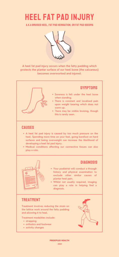 bruised heel or heel fat pad injury infographic from melbourne podiatrist